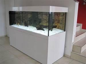 Komplett Aquarium Kaufen : komplett aquarien verkaufen kleinanzeigen kaufen verkaufen bei deinetierwelt ~ Eleganceandgraceweddings.com Haus und Dekorationen