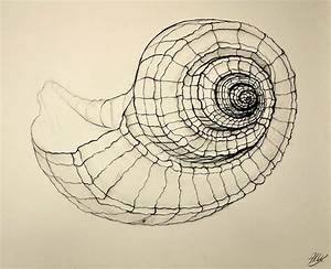 Line DrawingA Guide for Art Students