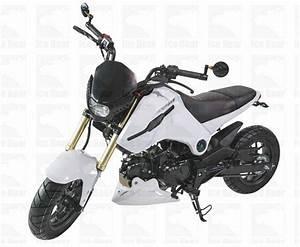 Ice Bear Fuerza 125cc Street Bike Motorcycle  Pmz125