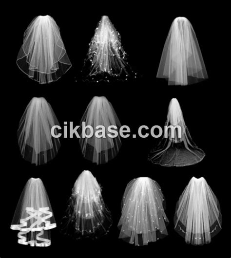 wedding wedding veil ps brushes abr file