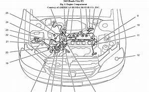 2005 Honda Civic Hybrid Belt Diagram