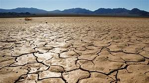 Seemorerocks: Global drought