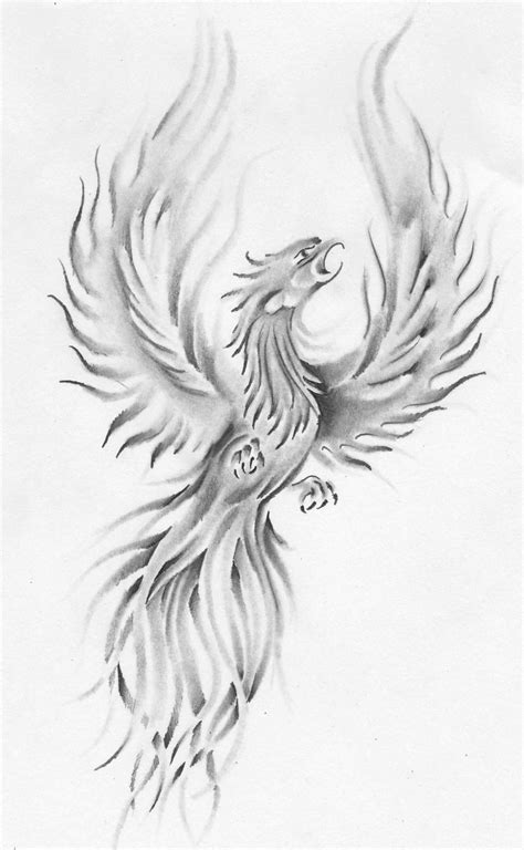 Phoenix drawing with shadows   Phoenix drawing, Phoenix tattoo, Phoenix tattoo design