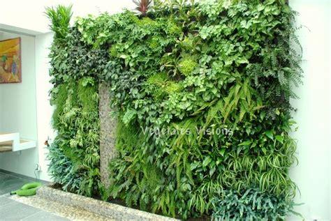 mur vegetal interieur pas cher mur vegetal exterieur prix sofag