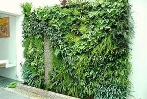 Mur Vegetal Exterieur : mur vegetal exterieur prix sofag ~ Melissatoandfro.com Idées de Décoration