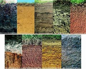 different-kinds-of-soil Images - Frompo - 1