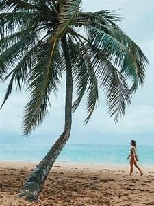Roteiro De 5 Dias Em Alagoas  Macei U00f3 E Arredores Em 2020  Com Imagens