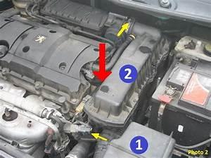 Filtre A Air 206 : changer sonde temp rature eau et thermostat 206 1 6 16v tuto ~ Gottalentnigeria.com Avis de Voitures