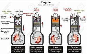 Diagram  Rodeo 2001 Engine Diagram 4 Cycle Full Version