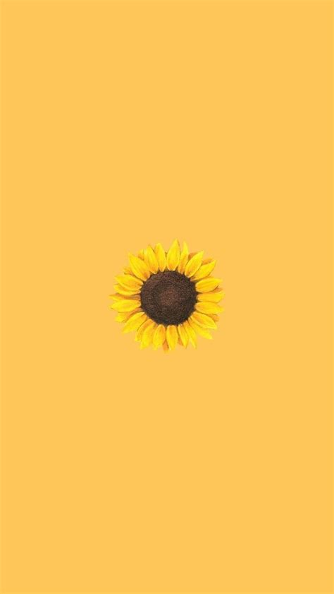 Aesthetic Yellow Flowers Wallpaper Iphone by Sunflower Aesthetic Wallpapers Top Free Sunflower