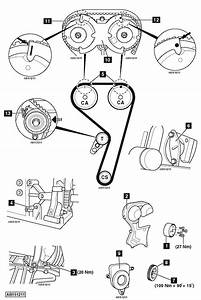 Service Manual  How To Replace Timing Belt 2009 Ford Focus