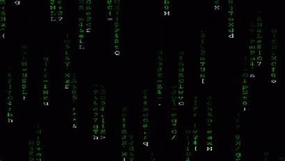 Matrix Wallpapers Animated Animal