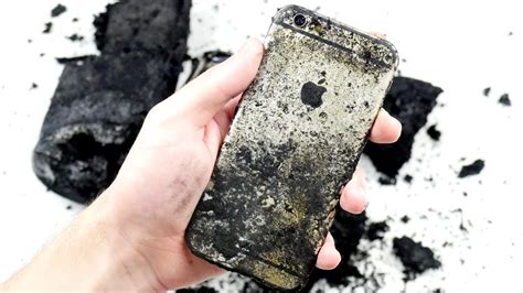 iphone    black snake   survive youtube
