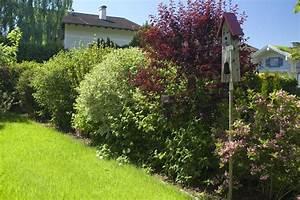 Sichtschutz Im Garten : 51 best sichtschutz im garten images on pinterest ~ A.2002-acura-tl-radio.info Haus und Dekorationen