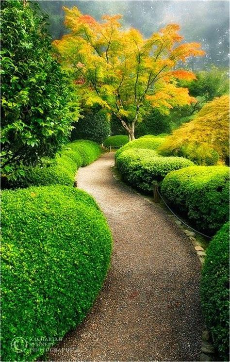 japanese garden portland oregon 17 best images about portland japanese garden on