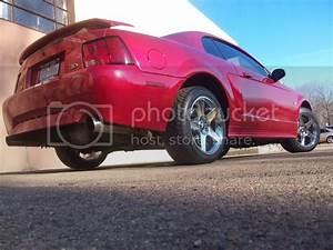 01 Mustang GT - MustangForums.com