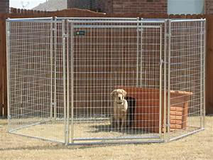 Large dog kennel haotian hardware wire mesh products coltd for Giant breed dog kennel