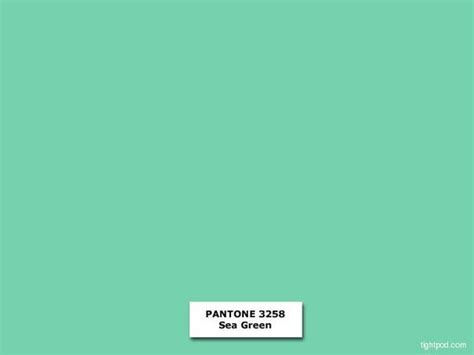 sea green color sea green image result for http tightjacket