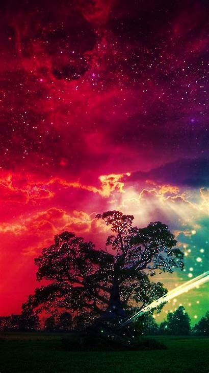 Magic Tree Wallpapers Backgrounds Phone Mobile Vibrant