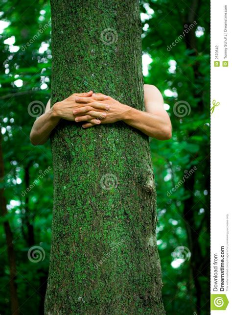 tree hugger environmentalist stock photography image