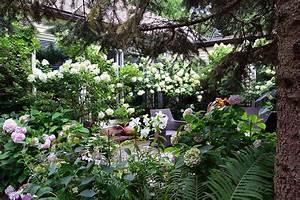 6445 best images about Cottage Garden Ideas, Favorite ...