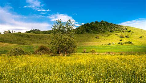 desktop hintergrundbilder natur sommer acker himmel