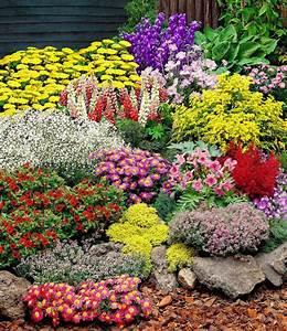 Hortensien Kombinieren Mit Anderen Pflanzen : gro er staudengarten 1a pflanzen kaufen baldur garten ~ Eleganceandgraceweddings.com Haus und Dekorationen