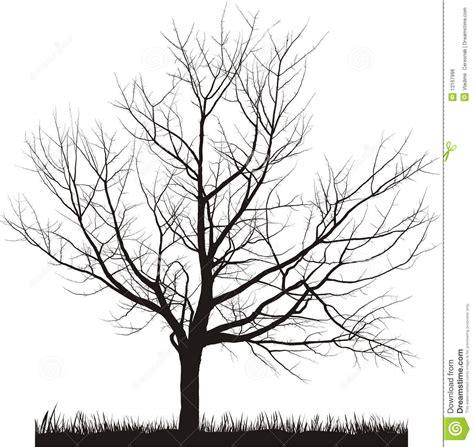vector illustration  cherry tree  winter stock vector