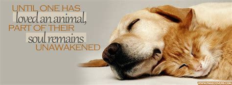 dog quotes facebook covers quotesgram