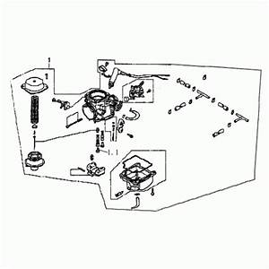 Silver Fox Go Kart Parts  Engine  Wiring Diagram Images