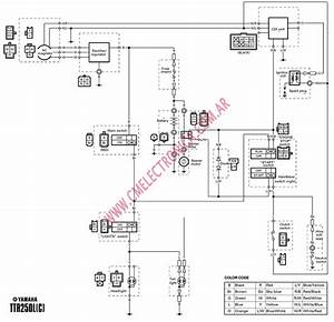 Yamaha Ttr 250 Wiring Diagram Free  Yamaha  Free Engine