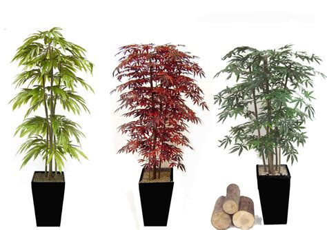 Artificial Trees And Plants Gallery Examples From. Room For Rent In Miami. Tuscan Wall Decor. Living Room Themes. Blue Living Room Chairs. Small Decorative Cabinet. Dr Seuss Classroom Decorations. Decorative Serving Platters. Cheap Room Decor For Teens