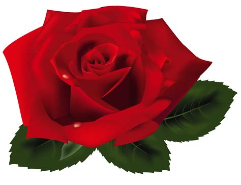 Free Download Best Free Clipart Red Roses On Clipartmag.com Apple Iphone 5s Cases 3 Ecoatm Xl Battery Mah Just Shows Logo Year Ram Camera Quality