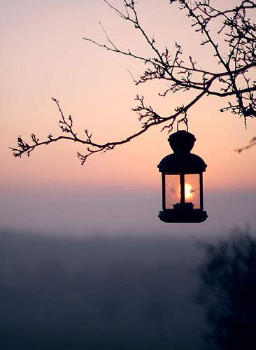 luz  mundo   misericordia yoskhaz