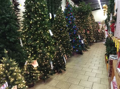 gallery of christmas tree store florida fabulous homes