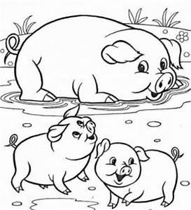 Baby Animal Match Coloring Page Coloring Pages For Adult Collections