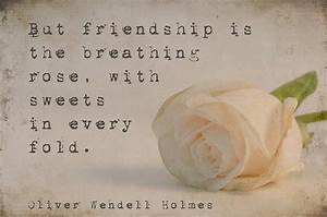 Heart Touching Best Friend Quotes. QuotesGram