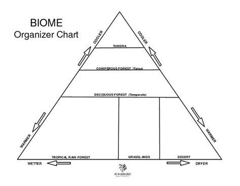 biome organizer chart worksheet lesson planet