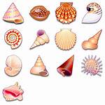 Shells Sea Icon Icons Pack 1399 Findicons