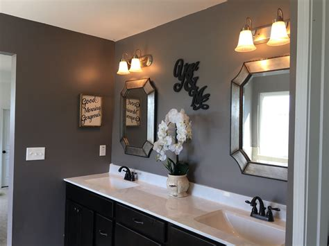 sherwin williams mink bathroom paint colors ideas in 2019 bathroom paint finish diy