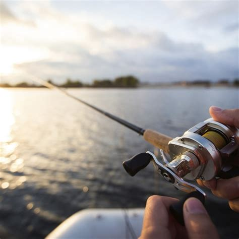 freshwater fishing gear freshwater fishing basics