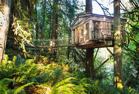 Treehouse Hotels  The World's 10 Coolest Treehouse Hotels
