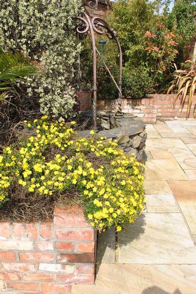 kevin garden kevin hosier garden and landscape design izvipi com