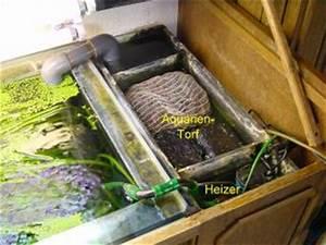Filter Für Regenwasser Selber Bauen : biofilter f r aquarien von nikolaus h tter ~ One.caynefoto.club Haus und Dekorationen