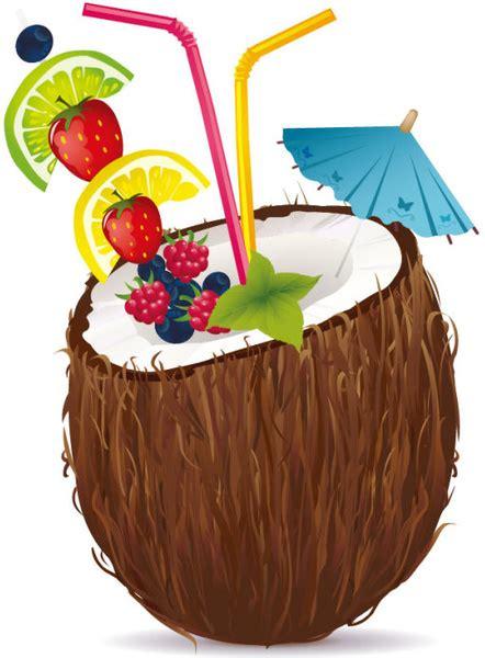 coconut  vector    vector