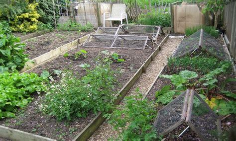 best mulch for veggie garden cultivating vegetable garden soil my gardening network