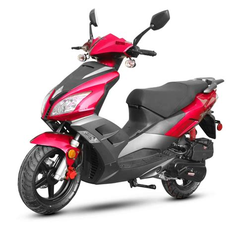 Wolf V-150 Scooter - New Scooters 4 Less - Gainesville, FL