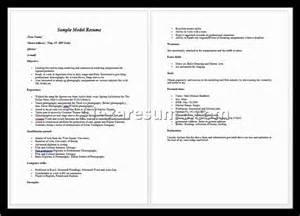 entry level accounting resume profile exles