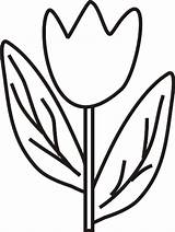 Tulip Coloring Pages Tulips Colouring Flowers Butterfly Tulipe Popular Coloringhome Comments sketch template