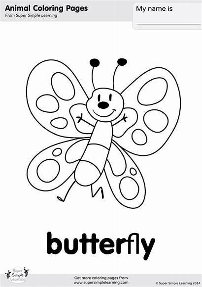 Butterfly Coloring Pages Simple Super Learning Easy